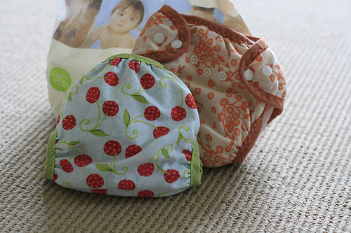 The Little One Size Diaper Pattern and gDiaper Inserts, Perfect fit :)