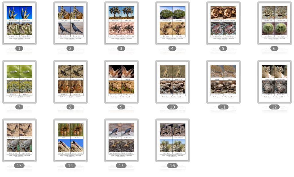 Desert Nomenclature